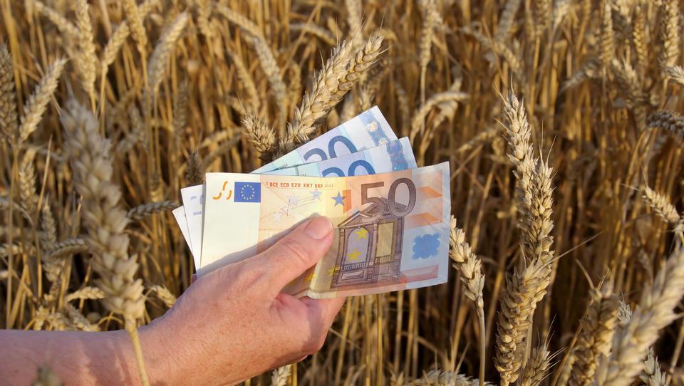 Evropski kmetijski ministri danes o kmetijskem proračunu po 2020