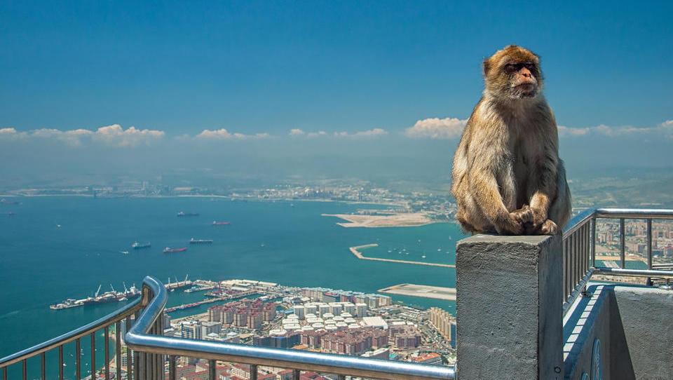 Stečajne ukane: namesto pri upnikih denar končal na Gibraltarju