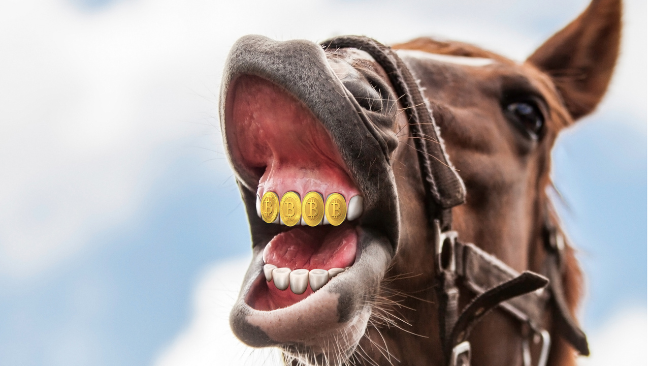 Kako ne biti konji z bitcoini