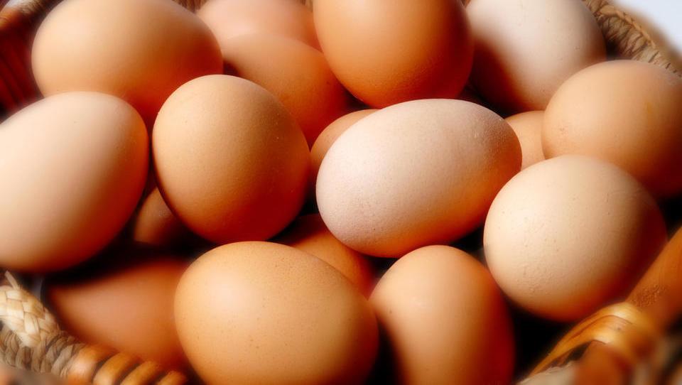 Pri dveh slovenskih podjetjih odkrili prepovedan fipronil v kokošjih jajcih