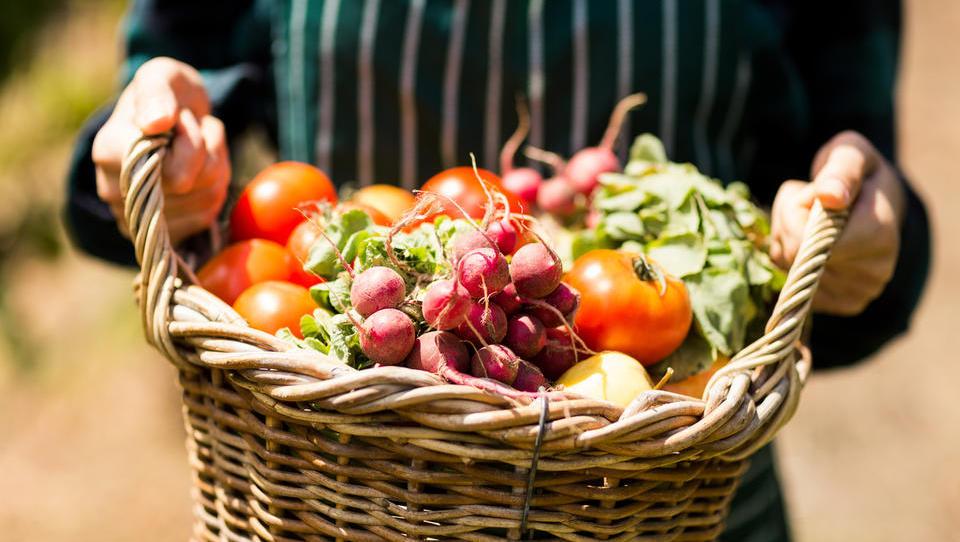 Lani najnižja stopnja samooskrbe pri sadju, zelenjavi in medu