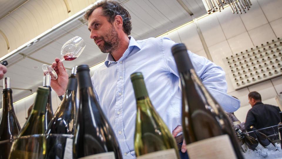 Ste vedeli, da vsa vina niso primerna za stroge vegane?
