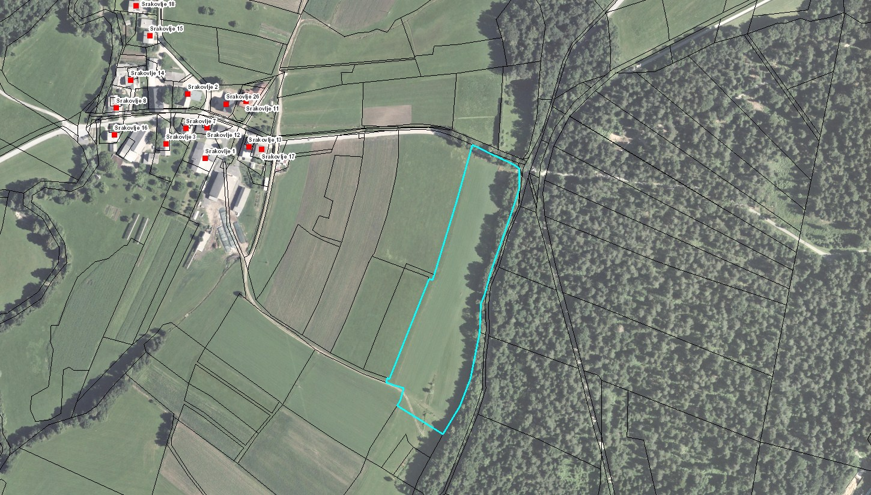 Stranske poti sanacije bank: DUTB naroča arheološka izkopavanja