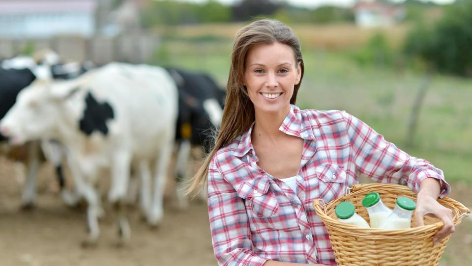 Komentar: Kje se je izgubila konkurenčnost slovenskega kmetijstva?
