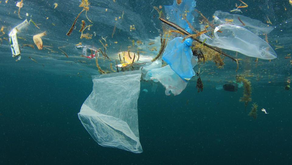 Na slovenski obali nadaljujejo z odstranjevanjem odpadkov