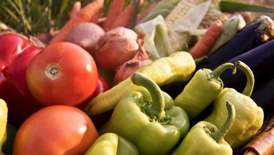 Danes je posvet o izboljšanju gojenja zelenjave v rastlinjakih