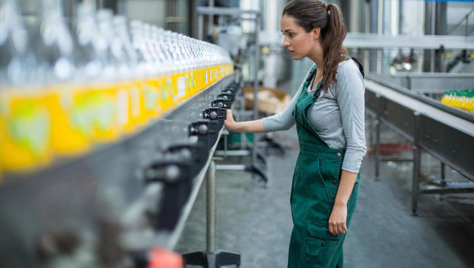 Februarja najbolj zaposlovali v proizvodnji