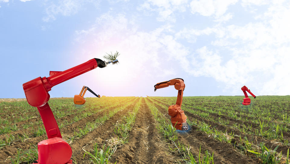 V kmetijstvu se odpirajo nova delovna mesta za robote