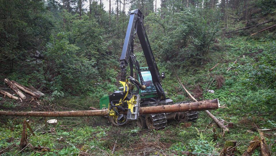 Po oktobrskem vetru je v gozdovih za 5,6 milijona evrov škode