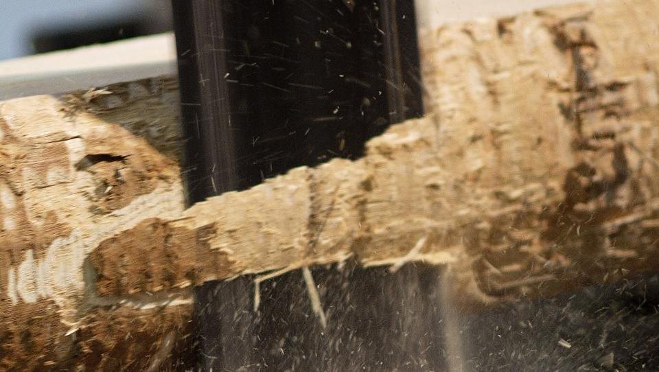 Imate pametno idejo na področju lesa? Od države lahko dobite do pol milijona evrov