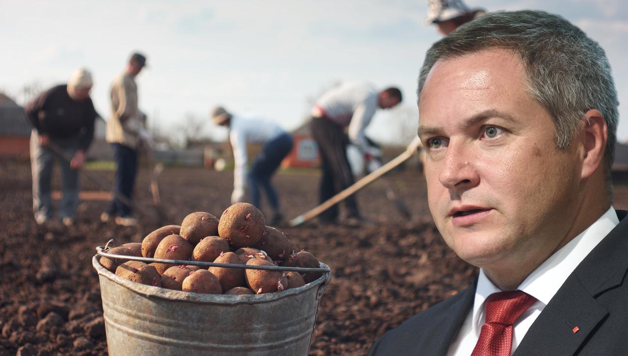 Židanov kmetijski zakon: kako bo novo birokratsko skrpucalo tolklo po domači hrani in dobaviteljih