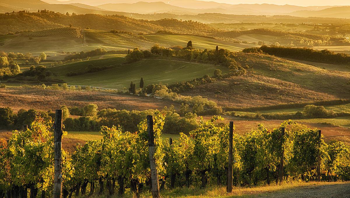 5 najbolj nenavadnih lokacij za pokušnje vina