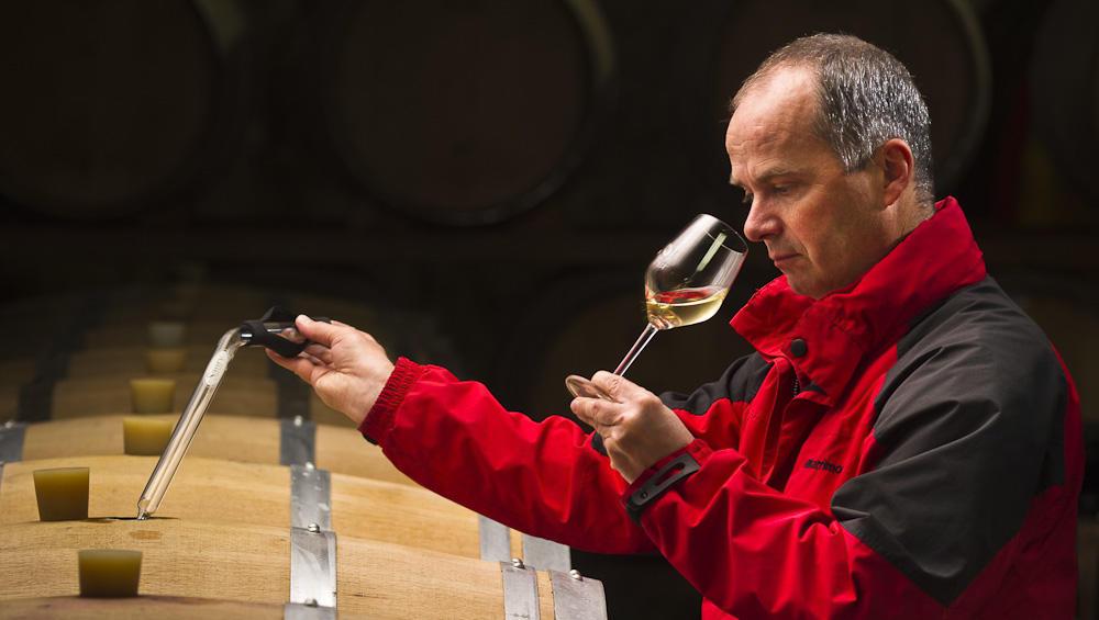 Od zemlje do vina: Plutovinast zamašek ni le relikt preteklosti