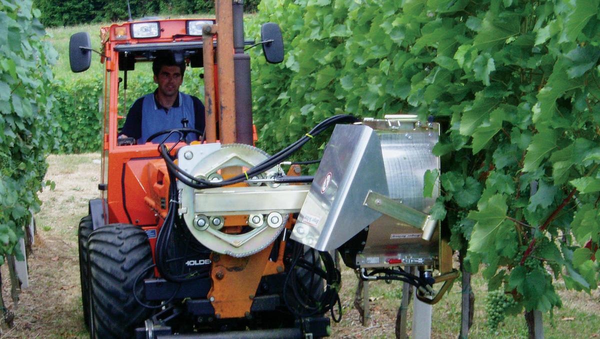 Aplikacija, ki optimizira delo v vinogradu in poceni pridelavo grozdja